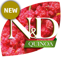 N&D Quinoa Wet
