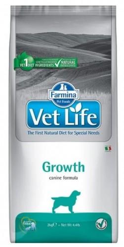 Vet Life Dog Growth