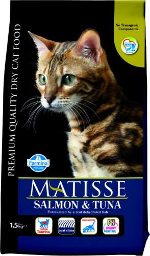 Matisse Salmon & Tuna