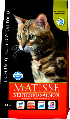 Matisse Neutered Salmon