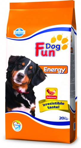 Fun Dog Energy