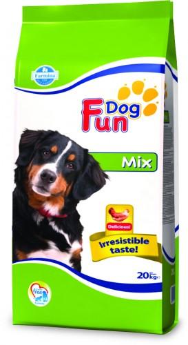 Fun Dog Mix